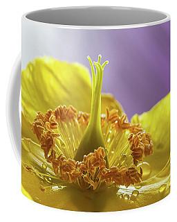 St Johns Wort Flower Coffee Mug