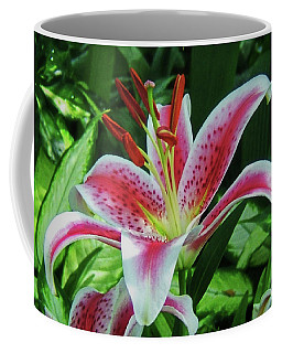 Coffee Mug featuring the photograph Stargazer Lily 001 by George Bostian