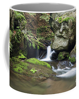 Coffee Mug featuring the photograph Stone Guardian Of The Waterfalls - Bizarre Boulder On The Bank by Michal Boubin