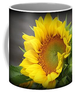 Sunflower Beauty Coffee Mug