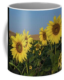 Sunflowers In The Palouse Coffee Mug
