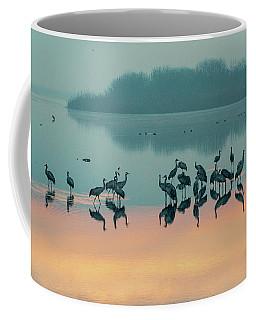 Sunrise Over The Hula Valley Coffee Mug