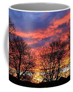 Coffee Mug featuring the photograph Sunset And Filigree by Nareeta Martin