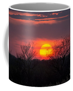 Sunset Landscape Coffee Mug by Cheryl Baxter