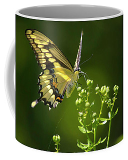 Coffee Mug featuring the photograph Elegant Swallowtail Butterfly by Christina Rollo