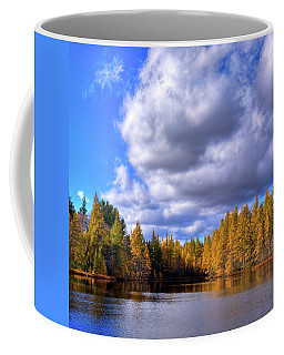 Coffee Mug featuring the photograph Tamaracks At Woodcraft Camp by David Patterson