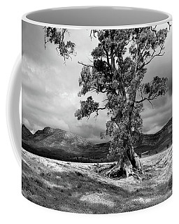 The Cazneaux Tree Coffee Mug