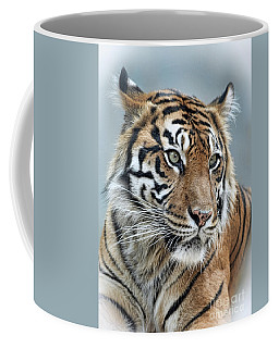 The Gaze Of A Tiger Coffee Mug