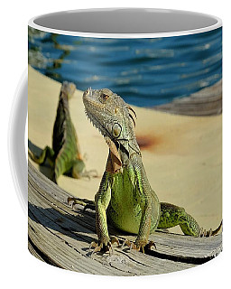 The Lookout Coffee Mug