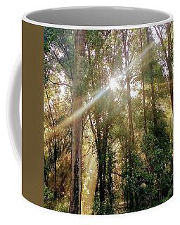 Shining Through The Trees Coffee Mug