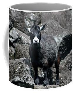This Is My Rock Coffee Mug