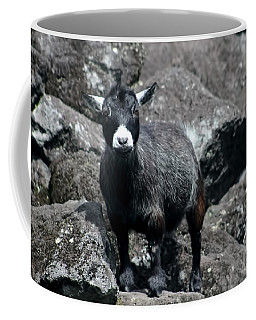 This Is My Rock Coffee Mug
