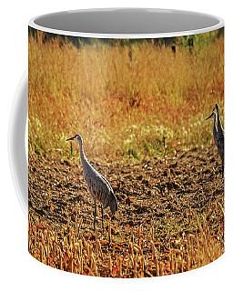 Coffee Mug featuring the photograph Three Amigos by Robert Bales