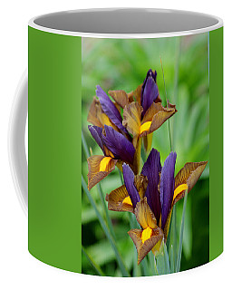 Tiger Irises Coffee Mug
