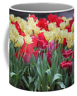 Tulips Coffee Mug by Suhas Tavkar