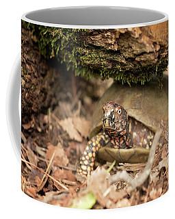 Turtle Town Coffee Mug