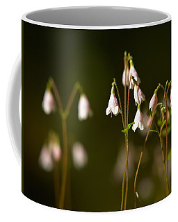 Twinflower Coffee Mug by Jouko Lehto