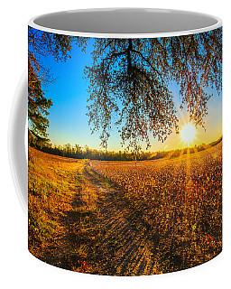 Under The Live Oak  Coffee Mug