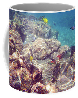 Underwater Beauty Coffee Mug by Karen Nicholson