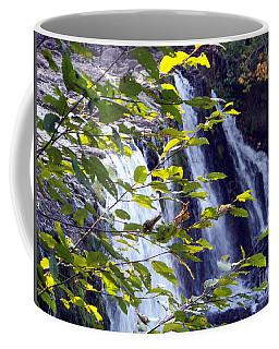 Upper Rock Creek Falls Coffee Mug