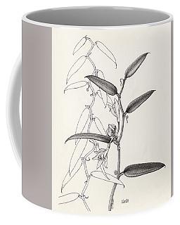 Vanilla Coffee Mug