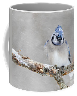 Waiting Out The Storm Coffee Mug by Amy Porter