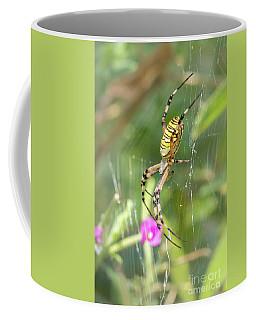 Wasp Spider - Argiope Bruennichi Coffee Mug
