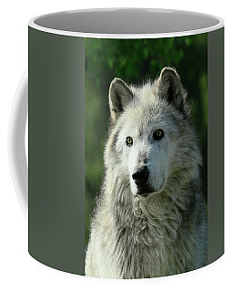 Coffee Mug featuring the photograph Watchful Eyes by Steve McKinzie