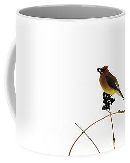 Waxwing Wonders Coffee Mug by Andrea Kollo