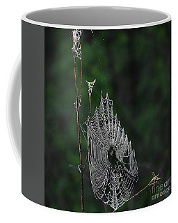 Coffee Mug featuring the photograph Webs We Weave by Skip Willits