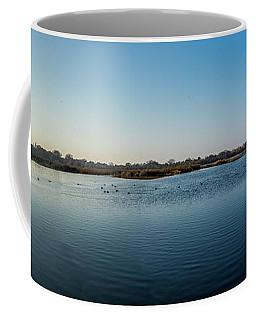 Wetlands Panorama  Coffee Mug