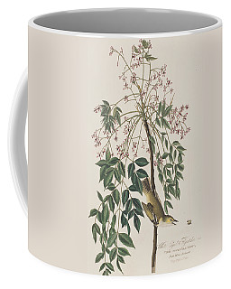 White-eyed Flycatcher Coffee Mug