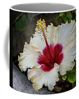 White Hibiscus Coffee Mug by Jane Luxton