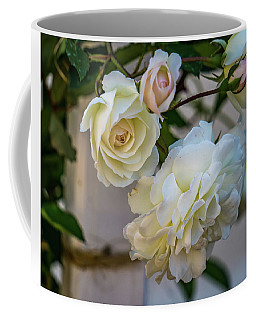 Coffee Mug featuring the photograph White Roses by Jane Luxton