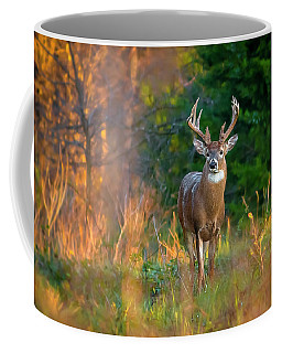 Whitetail At Sunset Coffee Mug