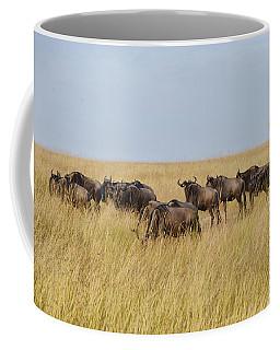 Wild Beasts Coffee Mug