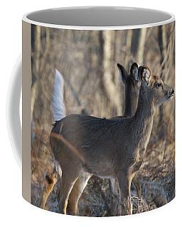 Wild Deer Coffee Mug