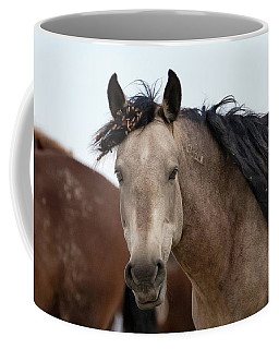 Coffee Mug featuring the photograph Wild Mustang by Ronnie and Frances Howard