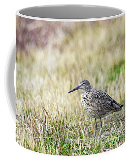 Coffee Mug featuring the photograph Willet by Michael Chatt