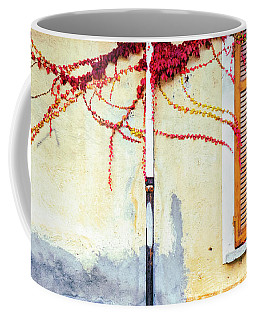 Coffee Mug featuring the photograph Window And Red Vine by Silvia Ganora