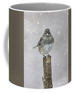 Winter Bird Coffee Mug by Debbie Green