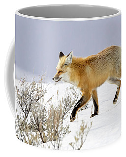 Coffee Mug featuring the photograph Winter Hunt by Jack Bell