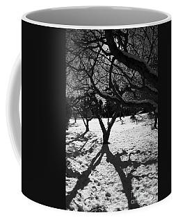 Coffee Mug featuring the photograph Winter Shadows by Yulia Kazansky