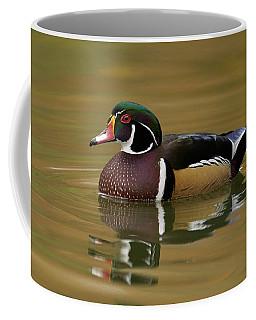 Wood Duck Coffee Mug by Doug Herr