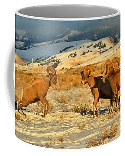 Grand Teton Bighorn Brawlers Crop Coffee Mug