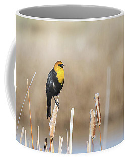 Coffee Mug featuring the photograph Yellow Headed Blackbird by Michael Chatt