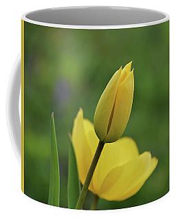 Coffee Mug featuring the photograph Yellow Tulips by Sandy Keeton