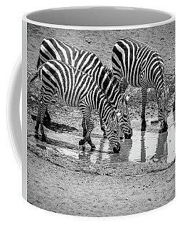 Zebras At The Watering Hole Coffee Mug