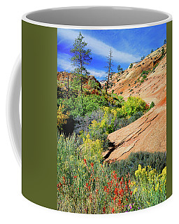 Zion Slickrock Coffee Mug