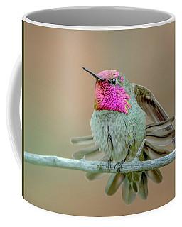 Anna's Hummingbird Coffee Mug by Tam Ryan